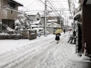 雪が積もった道路の写真