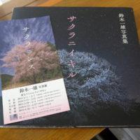 桜 写真集の表紙