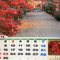 11月のカレンダーの写真